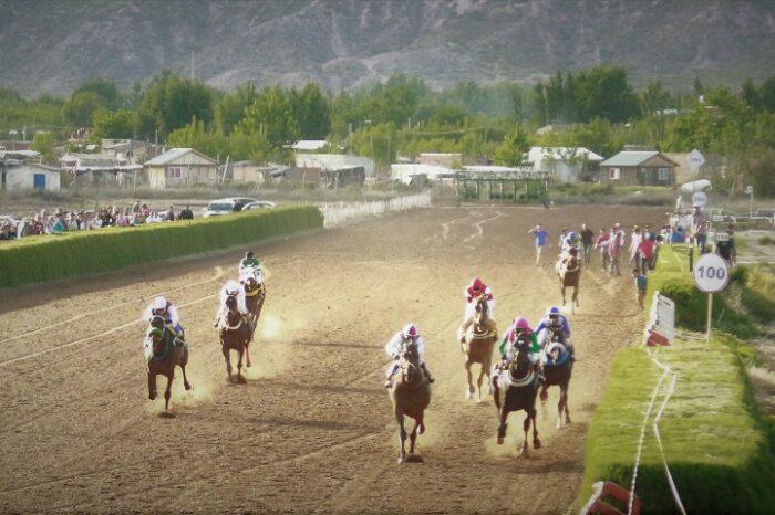Lo acusan de darle sustancias prohibidas a su caballo, el animal murió en la carrera